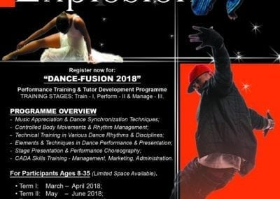 Dance-Fusion Performance Training Programme